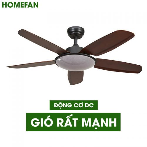 Quạt trần trang trí HomeFan HL-Fan699