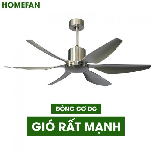 Quạt trần trang trí HomeFan HL-Fan698K